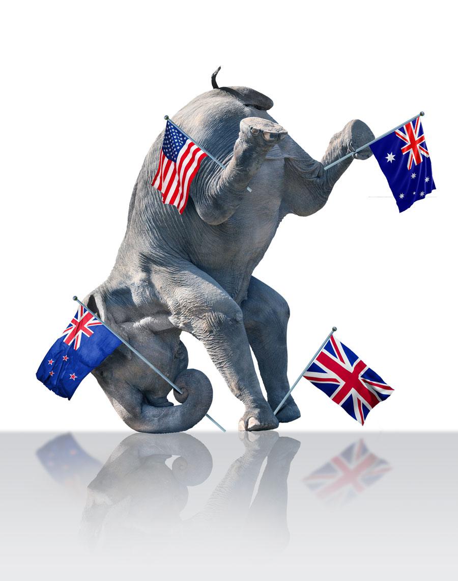the english school elephant